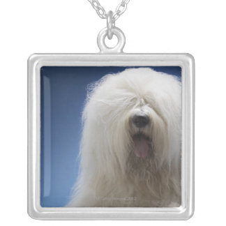 Sheepdog Silver Plated Necklace
