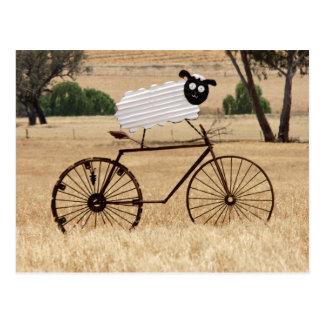 SheepThrills Postcard