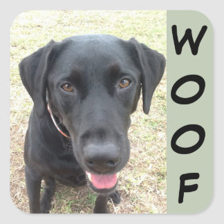 Sheet of 20 Black Lab Woof Stickers