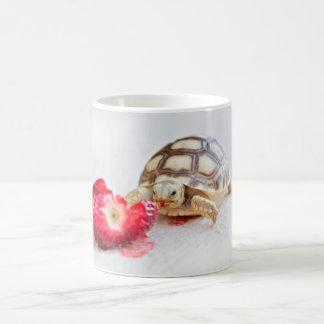 Sheldon the Tortoise Coffee Mug