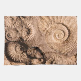 Shell Fossils Tea Towel