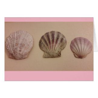 Shell Greetings Card