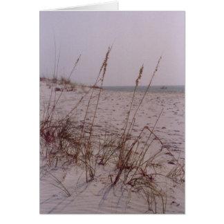 Shell Island Card