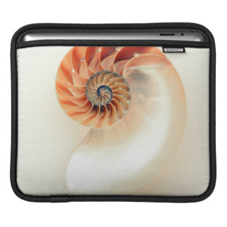 Shell Of Life iPad Sleeve