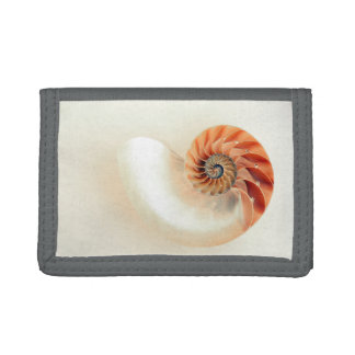 Shell Of Life Tri-fold Wallet