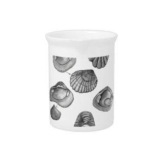 Shell sketch pitcher