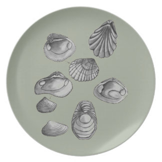 Shell sketch plate