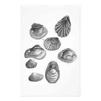 Shell sketch stationery