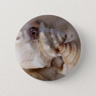 Shells 6 Cm Round Badge