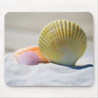 Shells on a Sandy Beach Mouse Pad