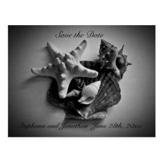 Shells Save the Date post card