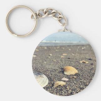 shells, shells, shells key ring