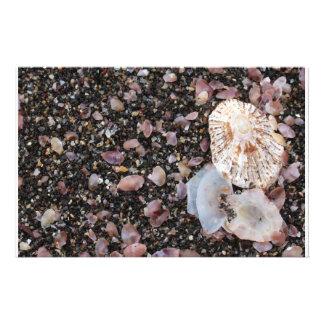 Shells Stationery Paper