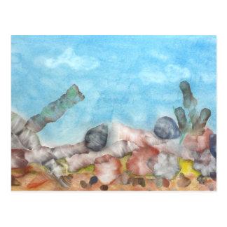 Shells Under The Sea. Postcard