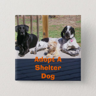 Shelter Dogs Button