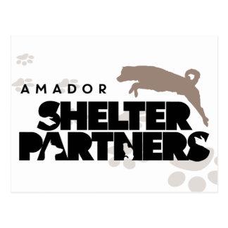 SHELTER Partners Logo Custom Postcard