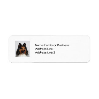 Sheltie Address Labels