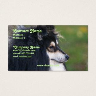 Sheltie Business Card