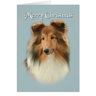 Sheltie Christmas Card