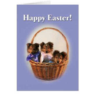 Sheltie Easter Basket Greeting Card