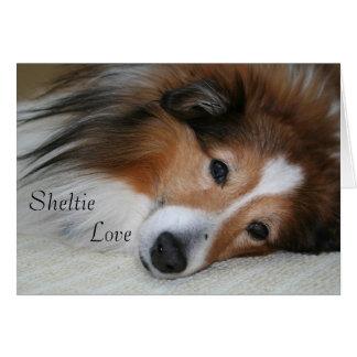 Sheltie Love Card