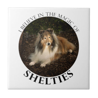 Sheltie Magic Tile