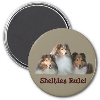 Sheltie Magnet