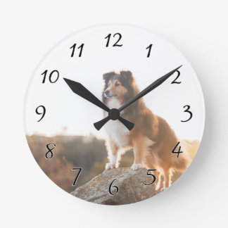 Sheltie on Cliff protectng heard during sunset Round Clock