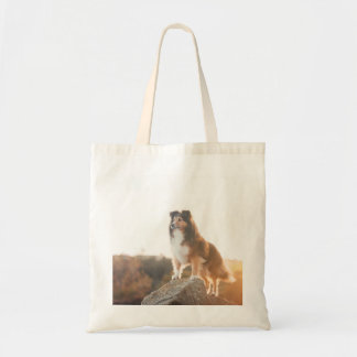 Sheltie on Cliff protectng heard during sunset Tote Bag