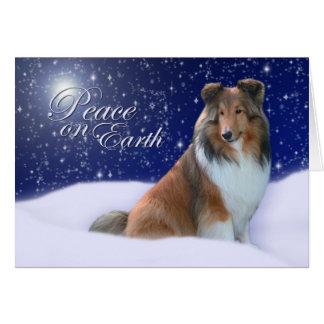 Sheltie Peace Christmas Card