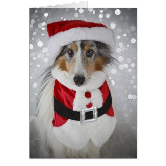 Sheltie Santa Clause Card