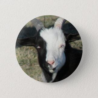 Shelton Goat Farm 6 Cm Round Badge