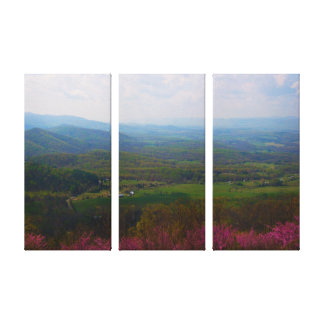 Shenandoah River Valley Canvas