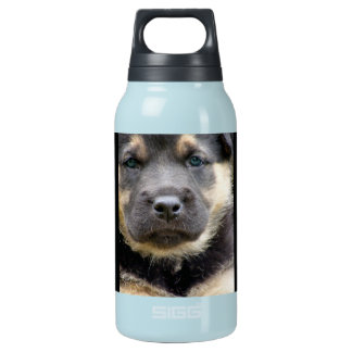 Shep Dog 0.3L Insulated SIGG Thermos Water Bottle