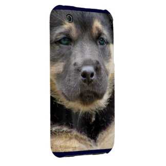 Shep Dog iPhone 3 Cover