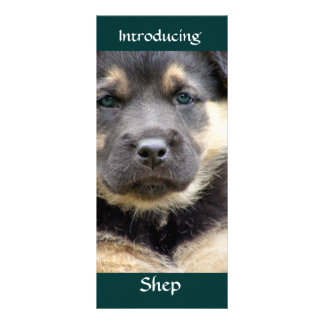 Shep Dog Personalized Rack Card