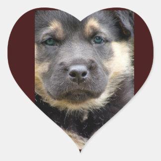 Shep Dog Stickers