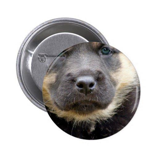 Shep Puppy Pinback Button
