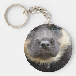 Shep Puppy Key Chains