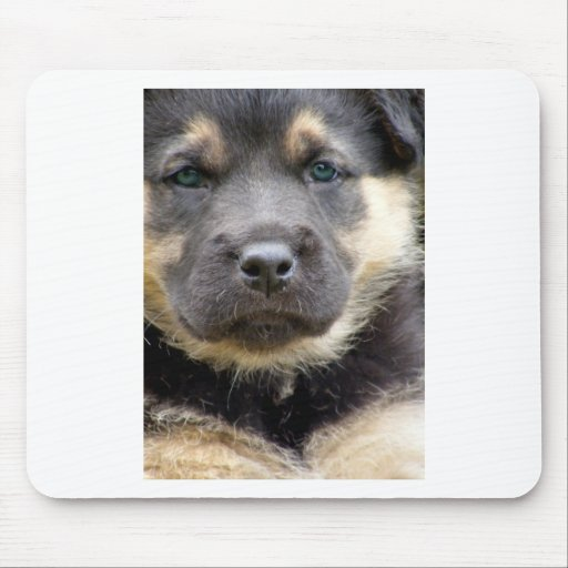 Shep Puppy Mouse Pads
