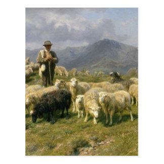 Shepherd of the Pyrenees by Rosa Bonheur Postcard