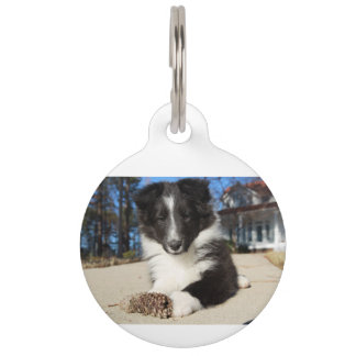 shet shp black and white puppy pet tag