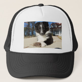 shet shp black and white puppy trucker hat