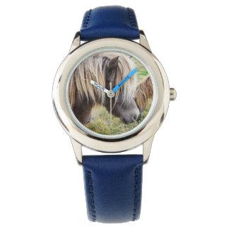 Shetland Pony, Bad, Hair Day, Kids Blue Watch