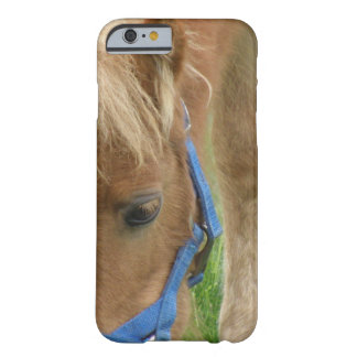Shetland Pony Barely There iPhone 6 Case