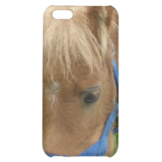 Shetland Pony iPhone Case Cover For iPhone 5C