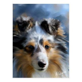 Shetland Sheepdog Art Postcard
