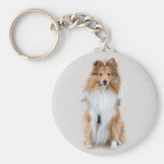 Shetland Sheepdog, sheltie cute dog photo portrait Basic Round Button Key Ring