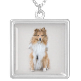 Shetland Sheepdog, sheltie cute dog photo portrait Silver Plated Necklace