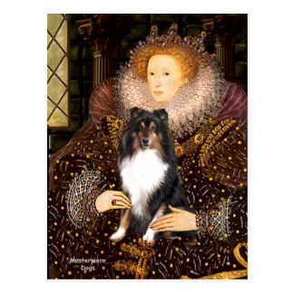 Shetland Sheepdog (Tri11) - Queen Postcard